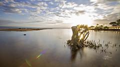 Sunrise 8th Jan 2016 (goodgirlbetty) Tags: longexposure sea seascape beach water sunrise canon cool photograph colourful ndx400
