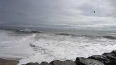 MVI_0827 (ninasprints) Tags: ocean beach hiking palosverdes cabrillobeach koreanfriendshipbell beachviews portuguesebend explorecalifornia latrailhikers