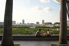 Picnic (TSE_J) Tags: travel bridge marina bay singapore study abroad helix sands merlion