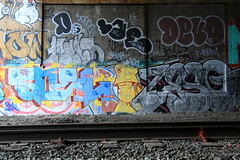 soel zeso (Luna Park) Tags: nyc ny newyork graffiti devo lunapark soel trackside lae zeso