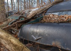 DSC08591.ARW-01 (juice95m3) Tags: abandoned rust vintagecar automobile junkyard oldcars classiccars