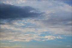 Nuage 1 (sophie.lamidiaux) Tags: bleu ciel nuage paysage arbre couleur brume