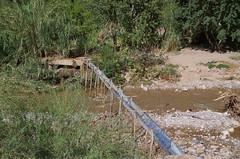 imgp5207 (Mr. Pi) Tags: river oasis morocco waterworks irrigation highatlas todgha