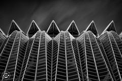 Museo de las ciencias de Valencia (Jose Luis Fuentes) Tags: white black verde art blancoynegro glass long exposure fine arquitecture