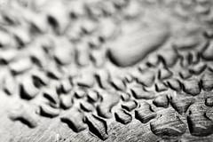 Droplets (C. Himekawa) Tags: macro water metal drop macrophotography