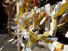 Omikuji (Phoebus58) Tags: japan paper temple sensoji tokyo shrine priest wish asakusa shinto papier japon kaminarimon ecriture omikuji bouddhisme voeux priere loterie