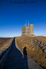 Signal Hill (becknatasha988) Tags: winter canon newfoundland stjohns bluesky tokina nl signalhill 1116mm canon7d