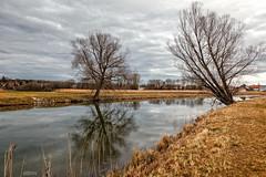An der Amper bei Schngeising (ulibrox) Tags: germany landscape bayern deutschland bavaria wasser outdoor fluss landschaft baum amper schngeising
