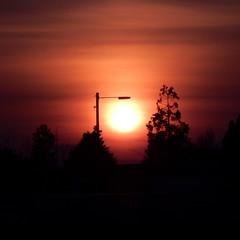 Evening light (Landanna) Tags: sunset nature zonsondergang streetlight natur natuur lamppost eveninglight solnedgang