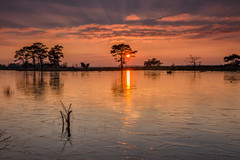 Golden Hour at Holtveen (Pieter ( PPoot )) Tags: zonsondergang bevroren lucht gouden zon goldenhour reflectie uur dwingelderveld holtveen
