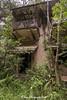 IMG_7108 (ydnA uaL) Tags: istana woodneuk