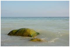 Keine Kreide (Caora) Tags: coast buchenwald nikon balticsea rgen ostsee frhling kreidefelsen d7100
