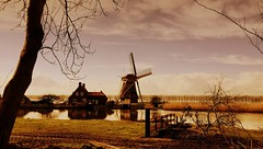 Dutch Windmill ( Rosemarie Christina  [Catching up]) Tags: dutch landscape windmill nature iphone iphoneography picasa justaroundthecorner march holland netherlands trees treetrunk architecture reed river farm reflections clouds sunnyday prettyworld flickrelite redmatrix