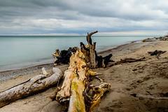 East Point Beach (vernonbone) Tags: longexposure beach water landscape outside nikon lakeontario eastpoint d3200 1855kitlens march2016