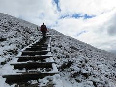 UK - Wales - Denbighshire - Near Llanbedr-Dyffryn-Clwyd - Offa's Dyke Path - Climbing steps at Moel Fenlli (JulesFoto) Tags: uk snow wales walking snowylandscape denbighshire clwydianhills offasdykepath llanbedrdyffrynclwyd