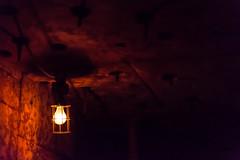 20151229-080909_California_D7100_8359.jpg (Foster's Lightroom) Tags: california us unitedstates arts disney northamerica movies rides anaheim darkrides indianajones adventureland themeparks disneylandpark indianajonesadventure us20152016
