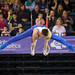 Daniel Purvis, GB on the rings