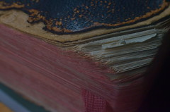 The Old Family Bible (MPnormaleye) Tags: old macro lensbaby 35mm paper religious book pages faith prayer religion faded cover utata worn bible weathered ribbon scripture binding