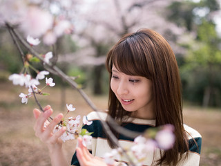 Girl looking at cherry blossoms *explored*