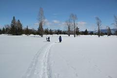Snowshoeing (Aggiewelshes) Tags: travel winter snow april snowshoeing wyoming jacksonhole grandtetonnationalpark 2016 gtnp taggartlaketrail