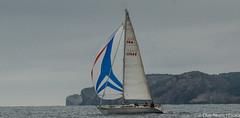 Club Nutic L'Escala - Puerto deportivo Costa Brava-13 (nauticescala) Tags: navegar costabrava regatas regata crucero comodor creuer velesdempuries