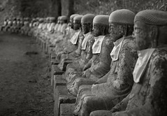 Narabi Jizo of Kanmangafuchi Abyss (fotographis) Tags: leica blackandwhite statue japan blackwhite buddha summicron nikko leicam 35mmsummicron narabijizo 90mmsummicron kanmangafuchiabyss leicam240