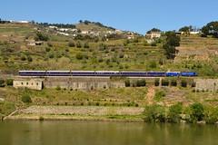 Comboio Especial n. 21861 (Vila Joya - Douro) - Granjo (2) (valeriodossantos) Tags: portugal train cp especial comboio riodouro furgo 1400 passageiros caminhosdeferro sy3 sy4 sy5 mesofrio carruagens linhadodouro fmnf locomotivadiesel comboiopresidencial df700 vilajoya fundaomuseunacionalferrovirio dyf408 sryf2 salopresidencial salorestaurante granjo a7yf704 carruagemdosjornalistas salodosministros vilajoyadouro