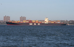 MSC MYKONOS in New York, USA. March, 2016 (Tom Turner - SeaTeamImages / AirTeamImages) Tags: nyc usa newyork water port bay harbor marine unitedstates harbour transport vessel spot cargo pony maritime transportation statenisland bigapple channel spotting waterway msc tomturner mscmykonos