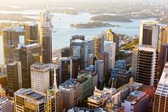 Sydney City Skyline (Stuart Beards) Tags: from city eye tower skyline night view sydney cityskyline skywalk sydneyskyline bdosydney btsydney sydneycityskylineatnight aonsydney telstrasydney