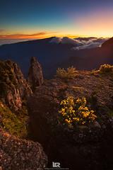 Lever de soleil au maido (LR Photographies) Tags: sunrise piton et leverdesoleil remparts iledelareunion maido reunionisland cimendef ledelarunion lrphotographies photographerunion
