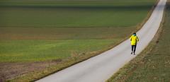 Keep On Running (C_MC_FL) Tags: road street man green field sport yellow canon landscape person photography eos austria fotografie path feld running gelb jacket mann grn straight asphalt distance tamron landschaft niedersterreich weg jacke laufen vital gerade joggen loweraustria strase 18270 60d b008