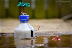 High dive (Pikebubbles) Tags: macro canon puddle miniatures miniature dive creative figurines tiny diver littlepeople splash itsasmallworld smallworld diorama thelittlepeople davidgilliver davidgilliverphotography