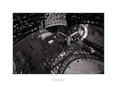 Paris n37 Tour Eiffel (Nico Geerlings) Tags: paris france monument architecture 28mm eiffeltower toureiffel champsdemars parijs elmarit ironlady nicogeerlings leicammonochrom ngimages nicogeerlingsphotography