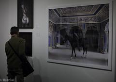 aipad photography show (branko_) Tags: show art photography international association the dealers aipad