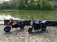 The first steps (Lusty-Daisy) Tags: river motorcycles triumph ducati hypermotard hypermotard939sp speedtriplerx