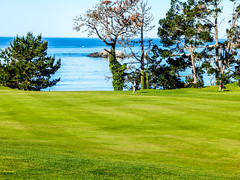 20160406-DSCN3497 (sabrina.hill) Tags: california golf pebblebeach montereycounty