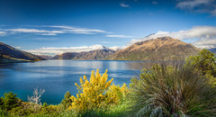 Lake Wakatipu in the Morning (slava_kushvalieva) Tags: city morning blue newzealand lake mountains water colors grass clouds landscape time country bluewater bluesky nz southisland otago queenstown hdr lakewakatipu calmwater kawaraufalls