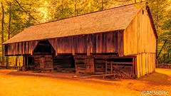 Cave's Cove Stable (alrob_photos) Tags: nature cabin rustic stable smokymountains splittone