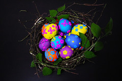 (mooooooooonlight) Tags: colors easter jack design spring paint mood bright decoration stuff eggs brightcolors eastereggs cutestuff coloredeggs     dyedeggs       eastermood         theeggsinthenesteastereggsinthenest