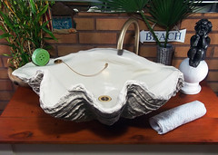 Grey Giant Clam Shell SINK 16 (LittleGems AR) Tags: ocean sea sculpture sun beach home statue giant bathroom shower aquarium soap sand bath sink natural contemporary unique decorative shell craft style toilet towel clam basin special shampoo taps wash ornament gift seashell pearl nautical reef decor spa luxury opulent fossils oneoff clamshell mollusks cloakroom bespoke tridacna sculpt crafted gigas facetowel
