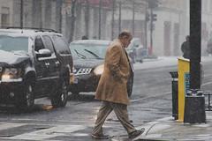 Man in Snowy Crosswalk (Steven Green Photography) Tags: urban snow storm man weather photography washington snowman districtofcolumbia traffic coat streetphotography vehicles intersection blizzard stevengreen snowmageddon2016