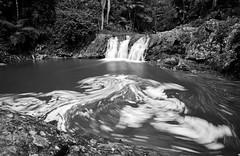Springbrook Swirls (Darcy Richardson) Tags: blackandwhite water monochrome landscape mono coast waterfall australia east bb current currumbin rockpools springbrooknationalpark canon50d
