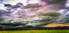 Shelfcloud (MSPhotography-Art) Tags: summer sky storm nature clouds germany landscape deutschland lights cloudy outdoor sommer natur himmel wolken bluesky thunderstorm summertime lightning blitz landschaft gewitter thunder severe hagel severeweather hailstorm heis sturm badenwrttemberg schwbischealb unwetter reutlingen bewlkt swabianalb albtrauf schwbsichealb strumfront