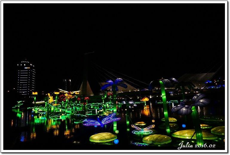台灣燈會 (29)