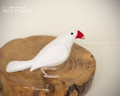 Calafate Personalizado (Dani_Fressato) Tags: handmade artesanato craft pssaro felt feltro ideias retalhos danifressato