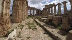 Selin-day (Mirko Tamburello) Tags: archeologicalpark marinelladiselinunte goprohero4