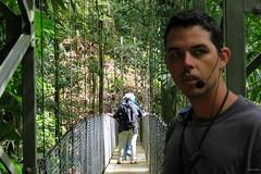 Hanging Bridge, Rainforest, Hanging Bridges Park, Costa Rica IMG_0949 (Hart Walter) Tags: rainforest birdwatching fortuna socialflycatcher iguanas epiphytes euphonia tropicalforest arenalvolcano costaricanature swalowtailedkite paraisoresort misticohangingbridgespark