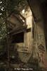 IMG_7112 (ydnA uaL) Tags: istana woodneuk