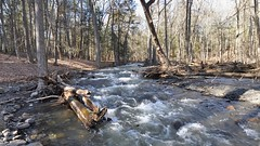 3x1 Hornsbeck Creek (DenSmith) Tags: winter water river pike pocono