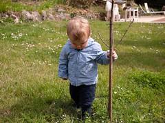 Le roi du jardin (Dahrth) Tags: baby grass garden lumix raw jardin littleboy bb pelouse herbe gf1 petitgaron micro43 panasoniclumixgf1 20mmpancake gf120 microquatretiers